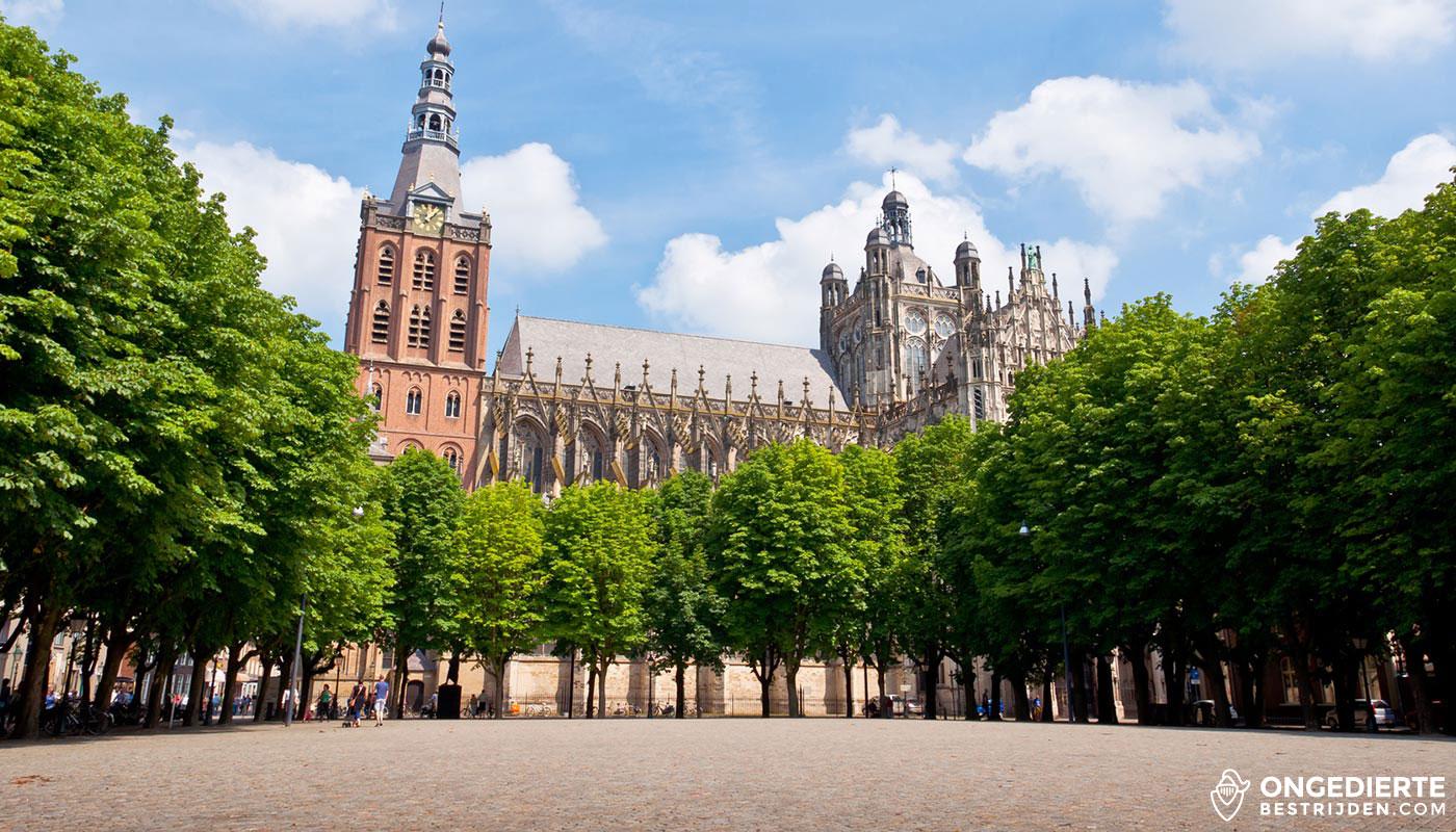 Kerk in den Bosch, plein omringt met bomen
