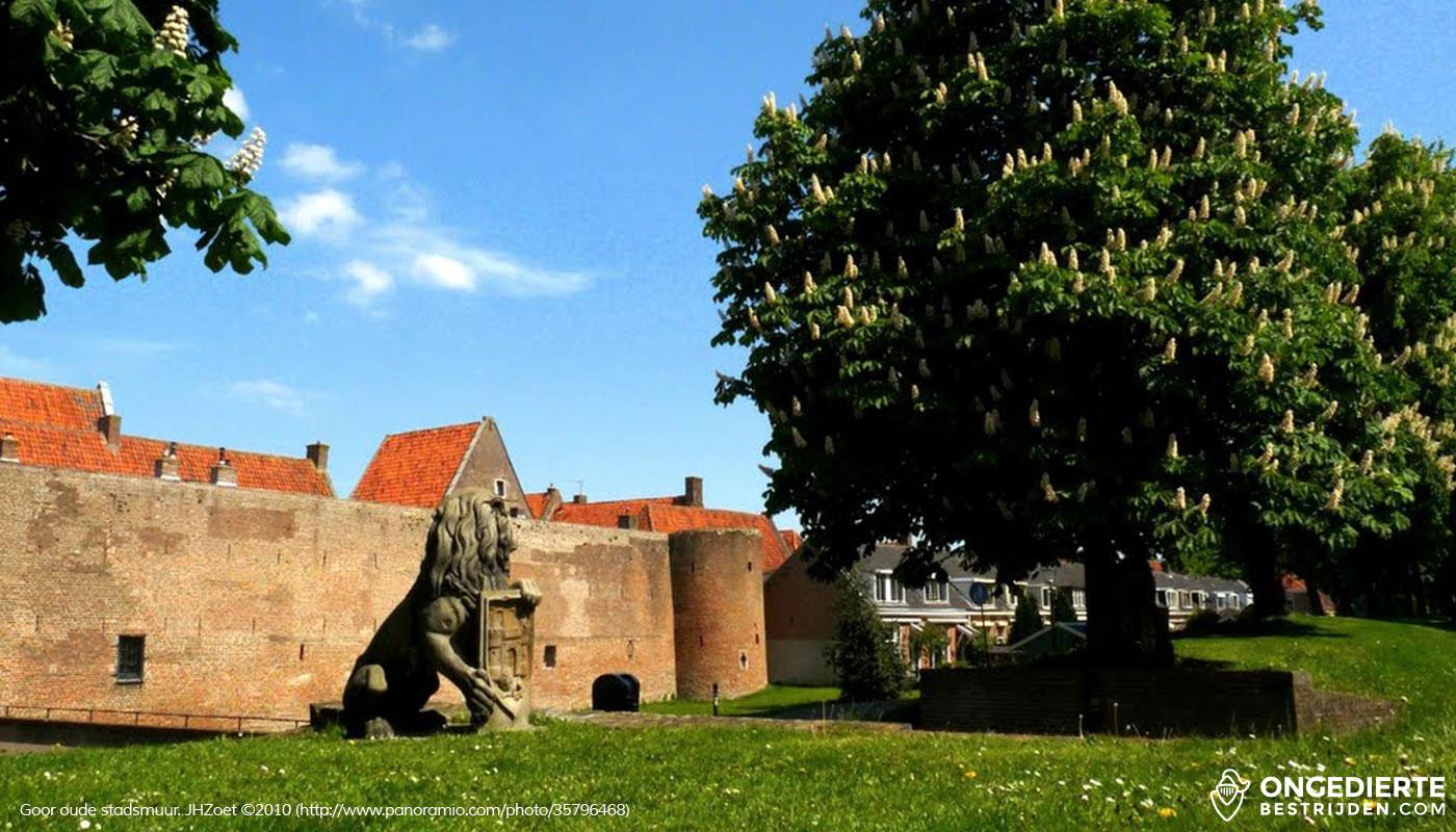 De oude stadsmuur van Goor met huizen erachter