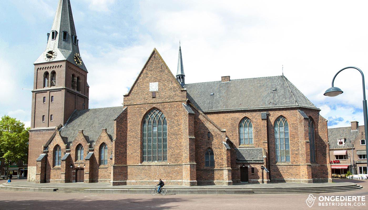 Oude kerk van Wageningen met op de achtergrond huizen