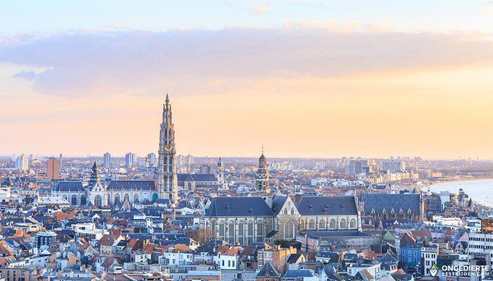 Ongediertebestrijders in België hebben dagtaak aan bestrijden wespen