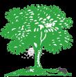 Logo van Termaat Plaagdierbeheersing