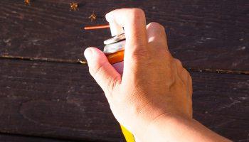 mieren zelf bestrijden